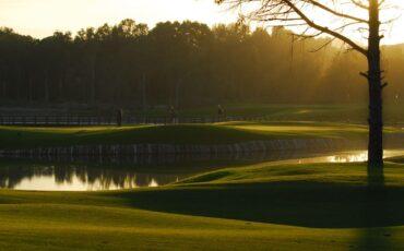 Pines golfbana