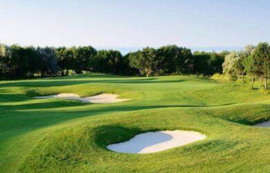 golfcourse14
