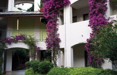 Cornelia Deluxe Classic Rooms Garden View